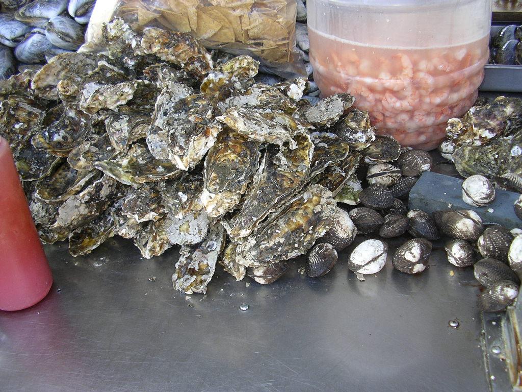 牡蠣、赤貝
